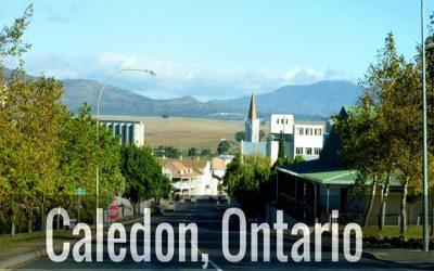 Calidon Airport LImo